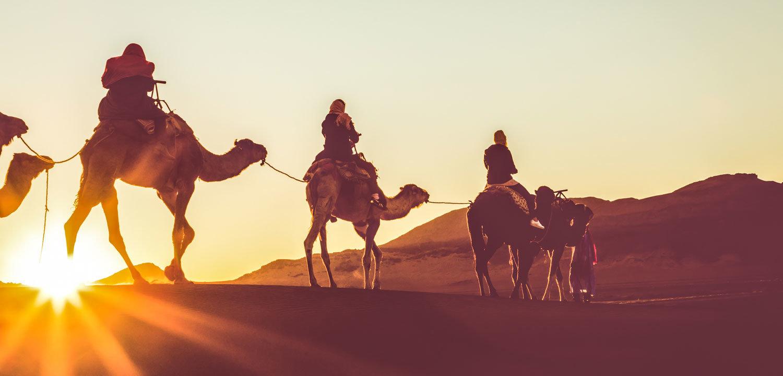 Marokko Adventures Erlebnisreisen, Kameltrek durch die Wüste von Marokko