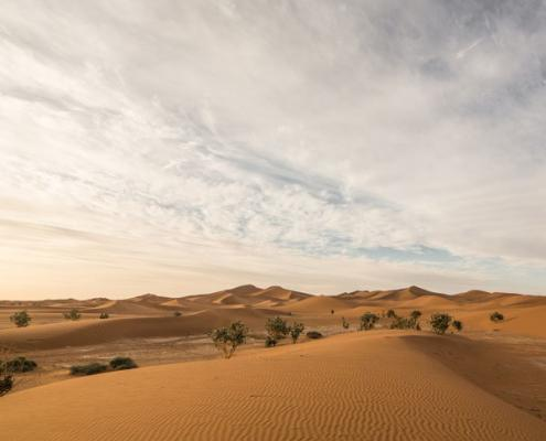 View on the sand dune Erg Chegaga near Mhamid in the desert of Morocco, Sahara